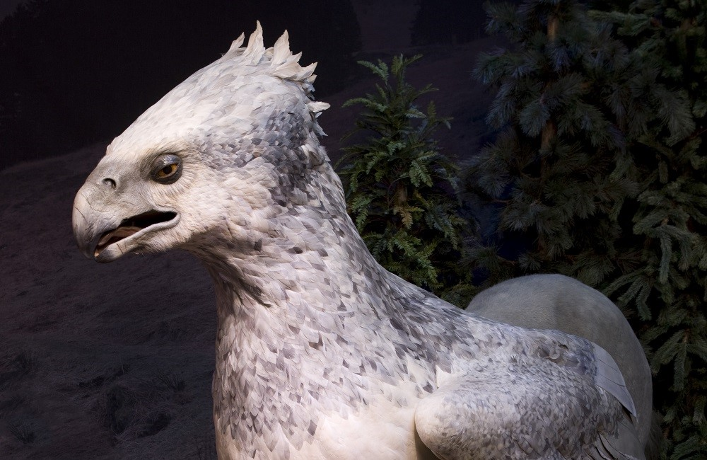 JB2_-_Buckbeak_the_Hippogriff