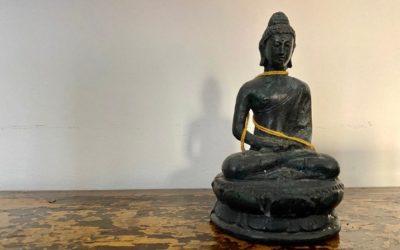 Ritratti #17 Il Buddha di Nicola Magrin