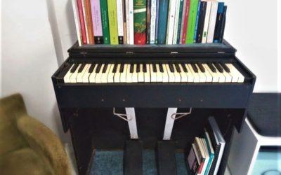 Ritratti #29 L'organo portatile di Simone Saccucci